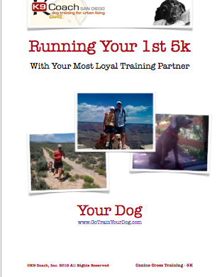 5K Running Dog Program