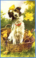 Post image for Easter Dog Tips, Tricks & Hazards