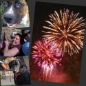 Post image for Dog Friendly 4th of July Tips