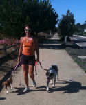 Post image for Leash Training Dog Walking or Running Rewards