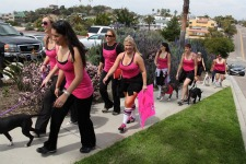Post image for Pretties for Pitties – San Diego Women Making a Difference for Pit Bulls